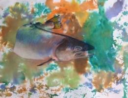 Splashing Salmon